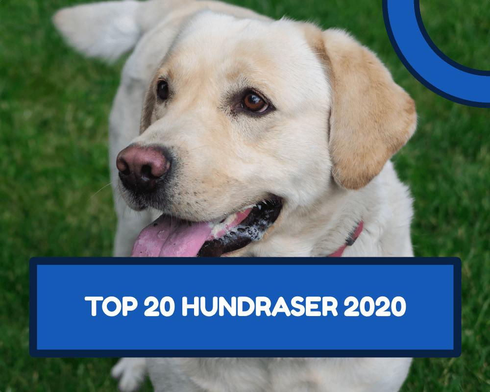 Hundraser 2020